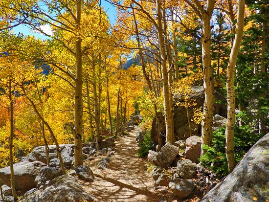 Aspen Colorado Hikes